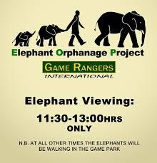 lilayi elephant nursery zambia