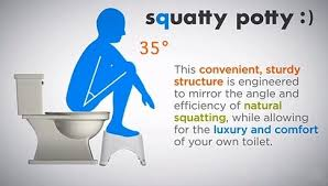 Toilet Health: Why You Must Squat And Not Sit